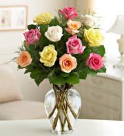 Roses variées 32€