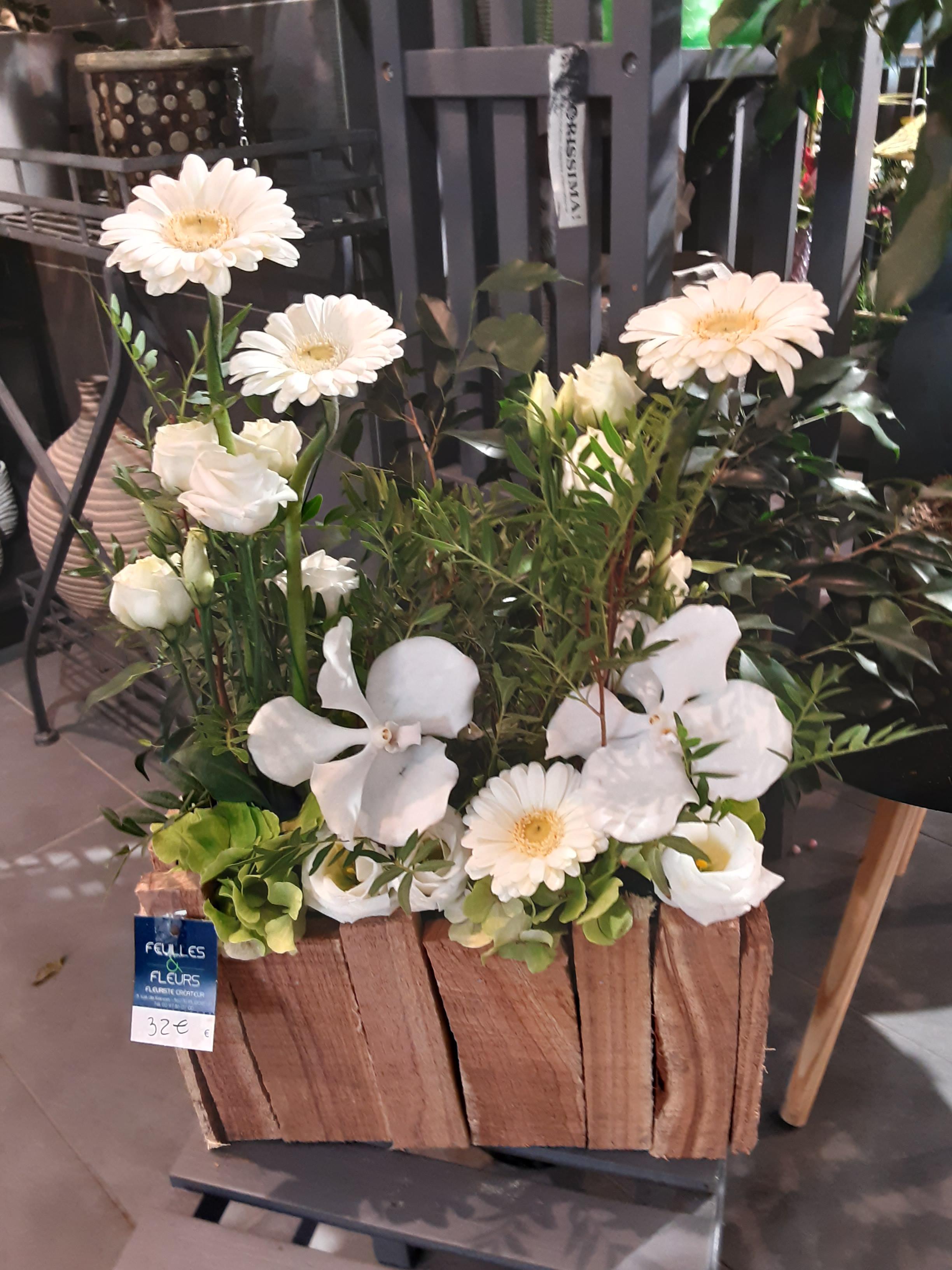 Blanc Nature à partir de 32€